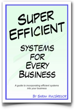 Super Efficient Systems for Business e-book by Sarah MacGregor CEO of SMac To The Rescue and Efficiency Expert