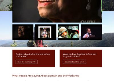 WordPress website created for Damian John – Diversity IQ